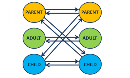 Transactional Analysis: Egotoestanden
