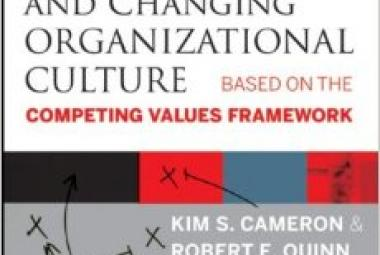 Diagnosing And Changing Organizational Culture